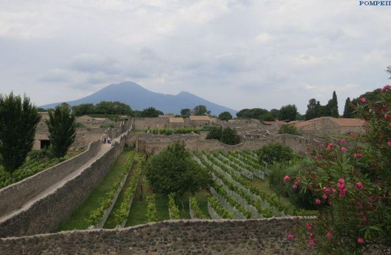 pompeii-13