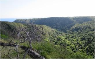 Tumuri Valley 1