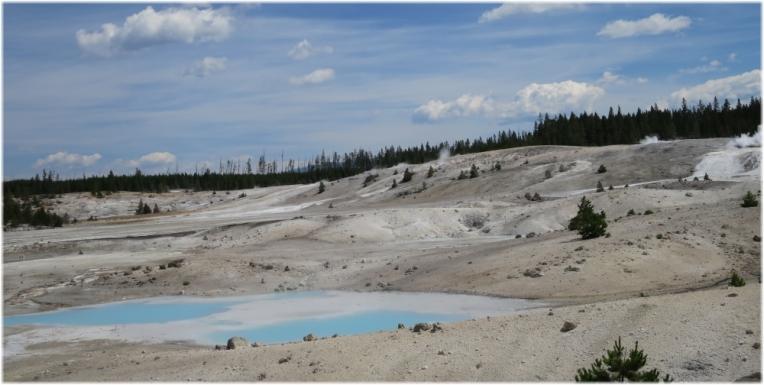Porcelain Basin fumaroles - Norris Geyser Basin