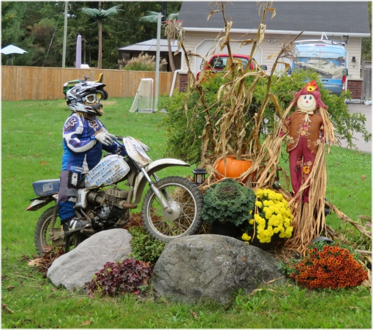 Scarecrow contest 2