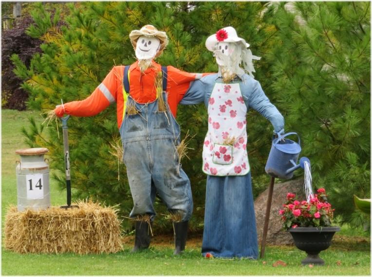 Scarecrow contest 3