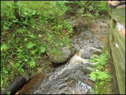 Munising Creek