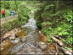 Munising Creek and Trail