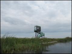 Sulina - bird watchers shelter
