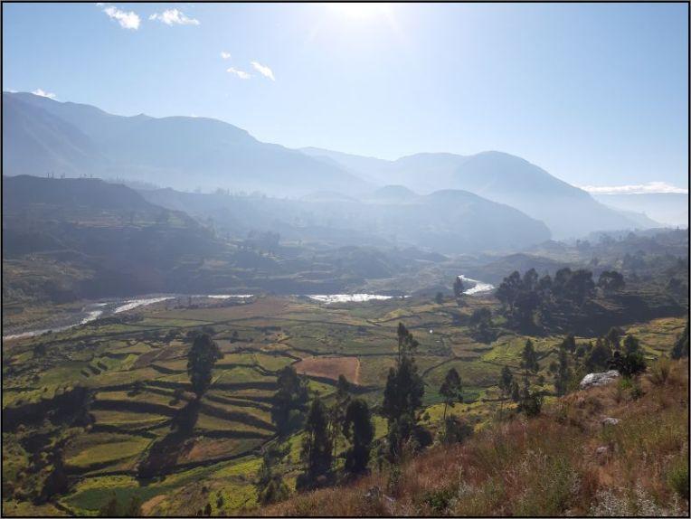 Colca Canyon - near Mirador del Tunturpay