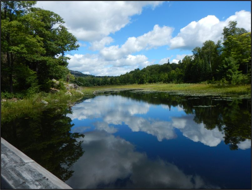 Killarney park PP - a peaceful spot along The Crack trail