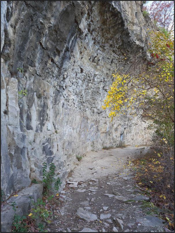 Niagara Escarpment - dolomite cliff