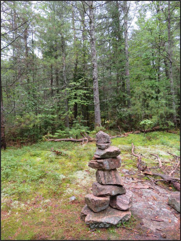 Recolett Falls trail