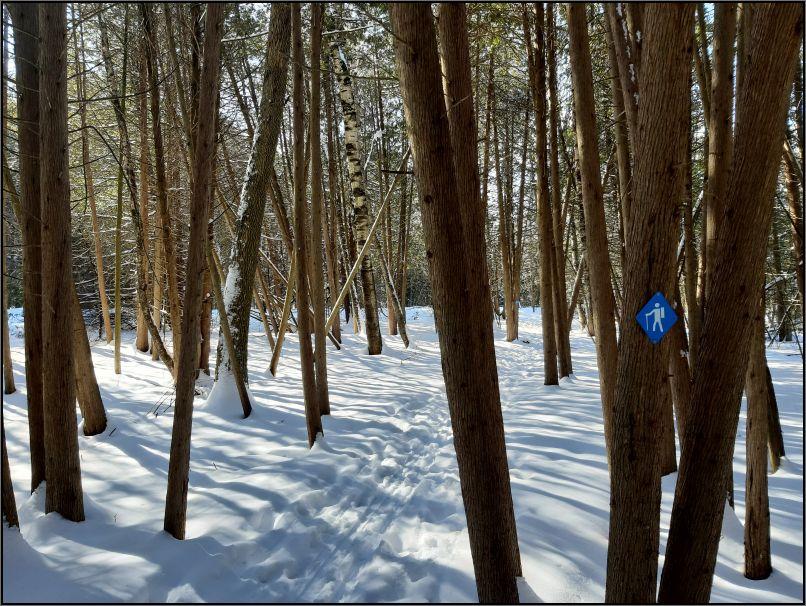 Emily Provincial Park